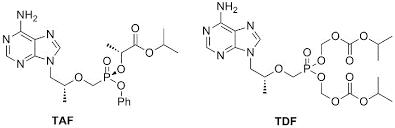 New Tenofovir Regimens Containing TAF (Tenofovir Alafenamide) What's Different, What's The Same