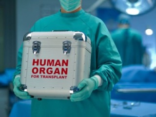 Johns Hopkins Performs First Ever Organ Transplant From HIV Positive Donor To HIV Positive Recipients