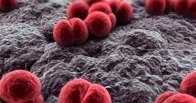 Meningitis Outbreak In Southern California MSM – Health Alert
